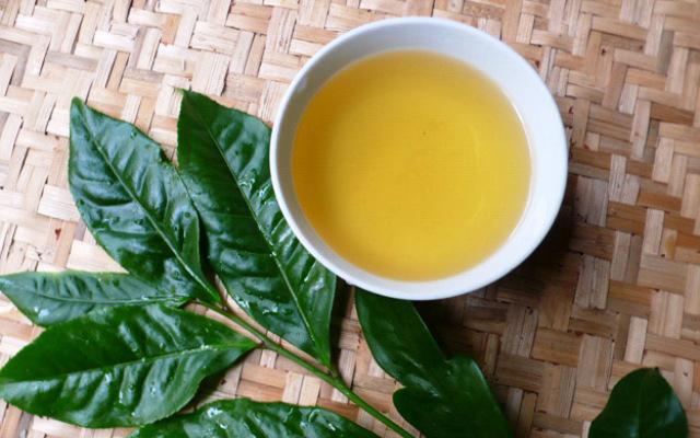 Bà bầu uống trà xanh có tốt không: Câu trả lời sẽ khiến chị em yên tâmsử dụng suốt thai kỳ - Ảnh 4