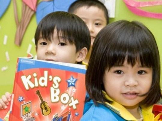 Cha mẹ nên cho trẻ học ngoại ngữ từ lúc mấy tuổi? - Ảnh 2