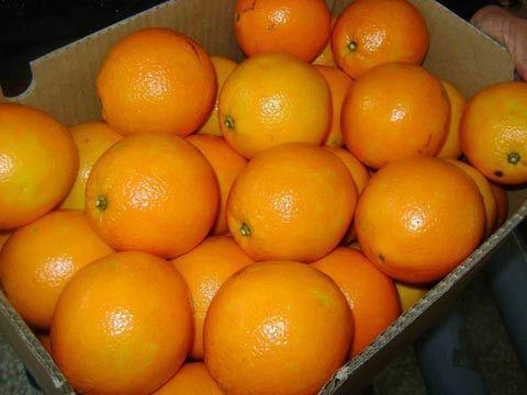 Mẹo chọn hoa quả tươi, an toàn cho gia đình - Ảnh 2