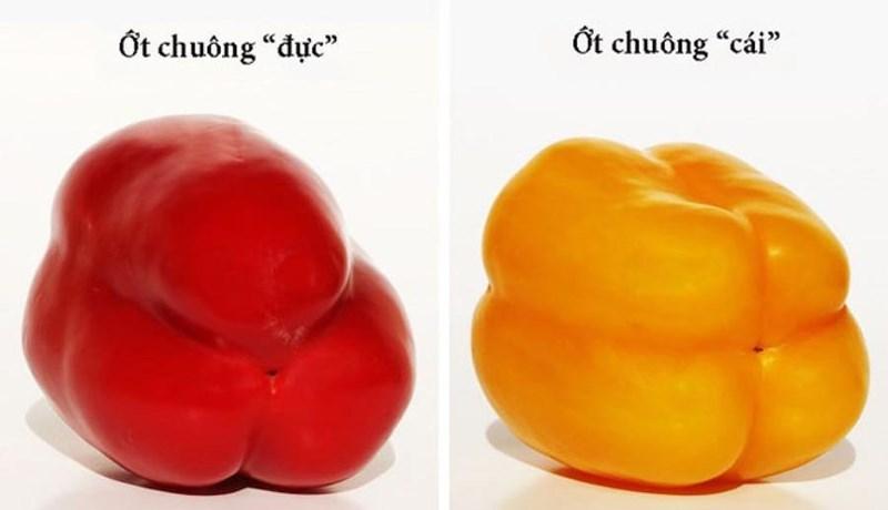 Mẹo lựa chọn trái cây tươi an toàn mà bạn cần biết - Ảnh 2