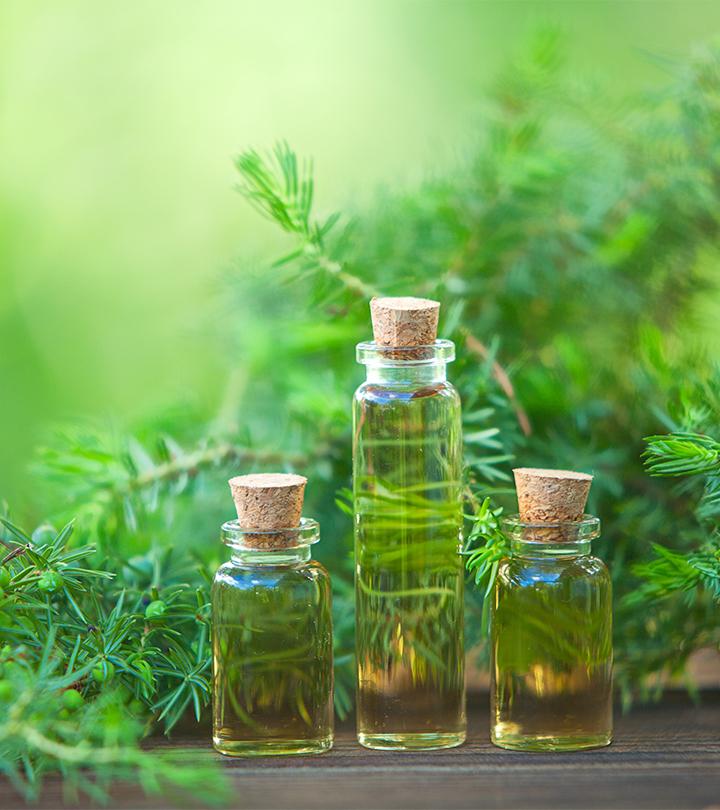Những cách dùng tinh dầu tràm cho trẻ sơ sinh để bảo vệ tối đa làn da nhạy cảm  - Ảnh 1