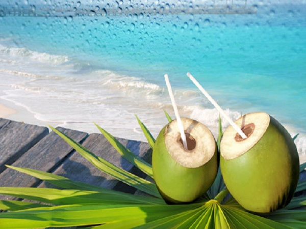 Nước dừa đóng một vai trò quan trọng trong sức khoẻ tổng thể và sự phát triển của cơ thể trong thời kỳ mang thai. Ảnh: Panama Jack Blog.
