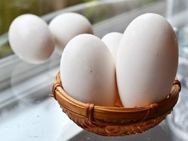 Thành phần dinh dưỡng của trứng ngỗng không bằng trứng gà. Ảnh minh họa.