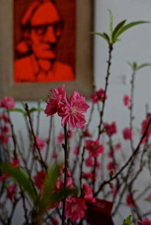 Xuân Bắc, Tự Long, Quang Dũng, Hương Tràm bày biện nhà cửa đón xuân - Ảnh 10