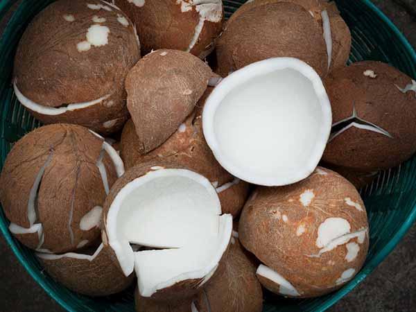 8 lợi ích sức khỏe không ngờ của dừa khô - Ảnh 1