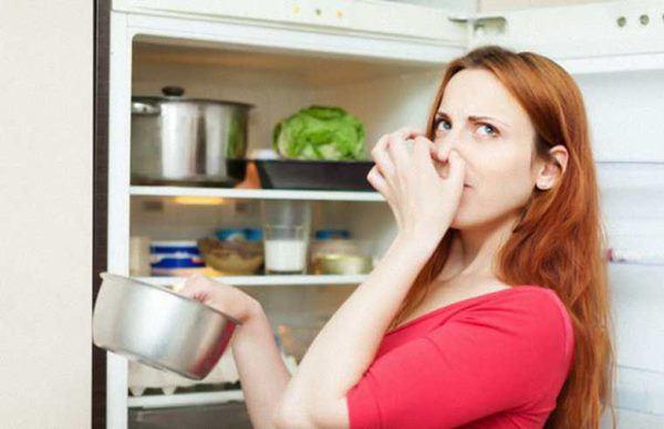 Dấu hiệu cảnh báo tủ lạnh hết gas, phải thay ngay kẻo cả nhà gặp họa - Ảnh 2