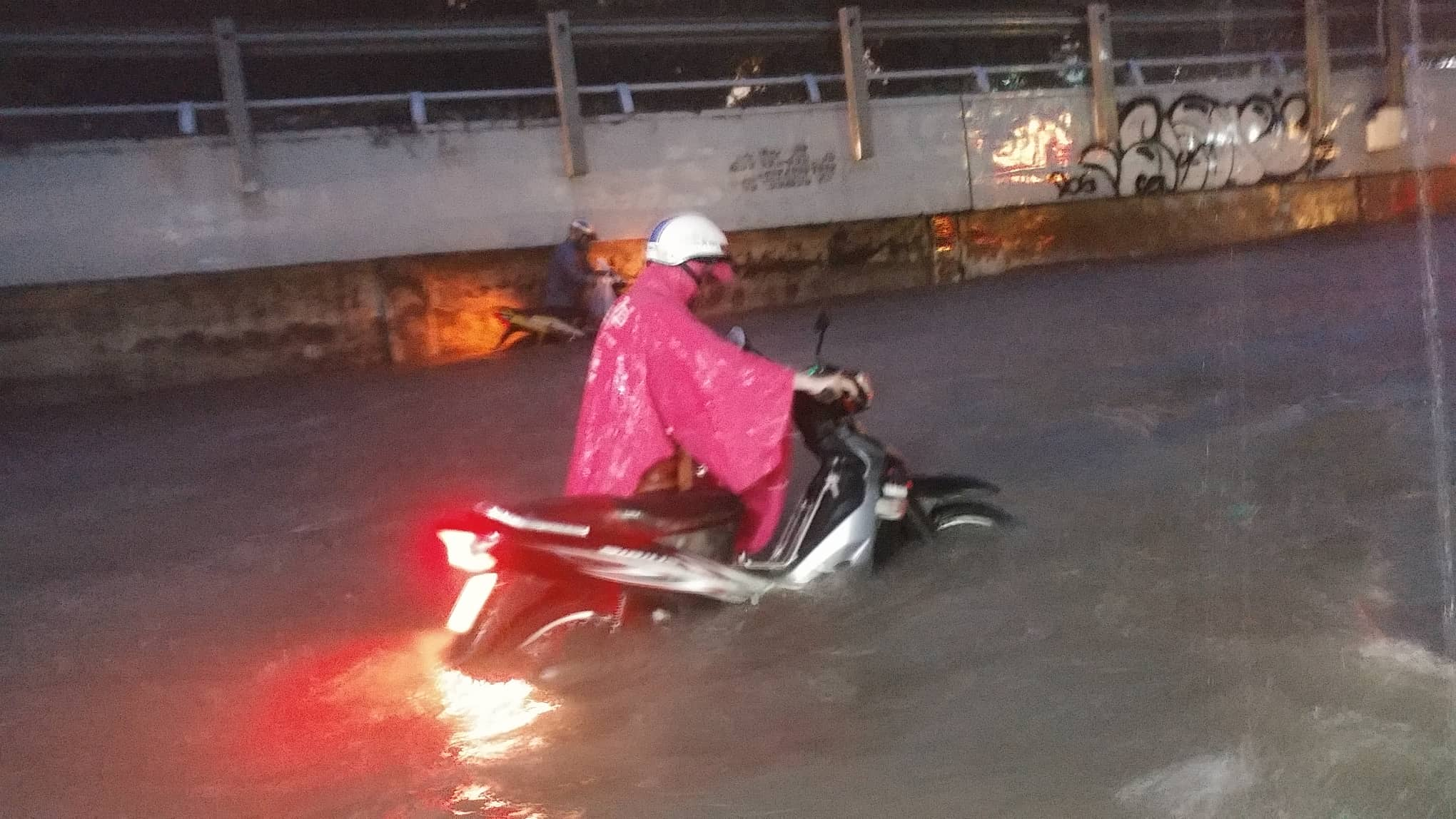 Sài Gòn ngập kinh hoàng, cây ngã đè người đi xe máy tử vong trong tâm bão - Ảnh 7