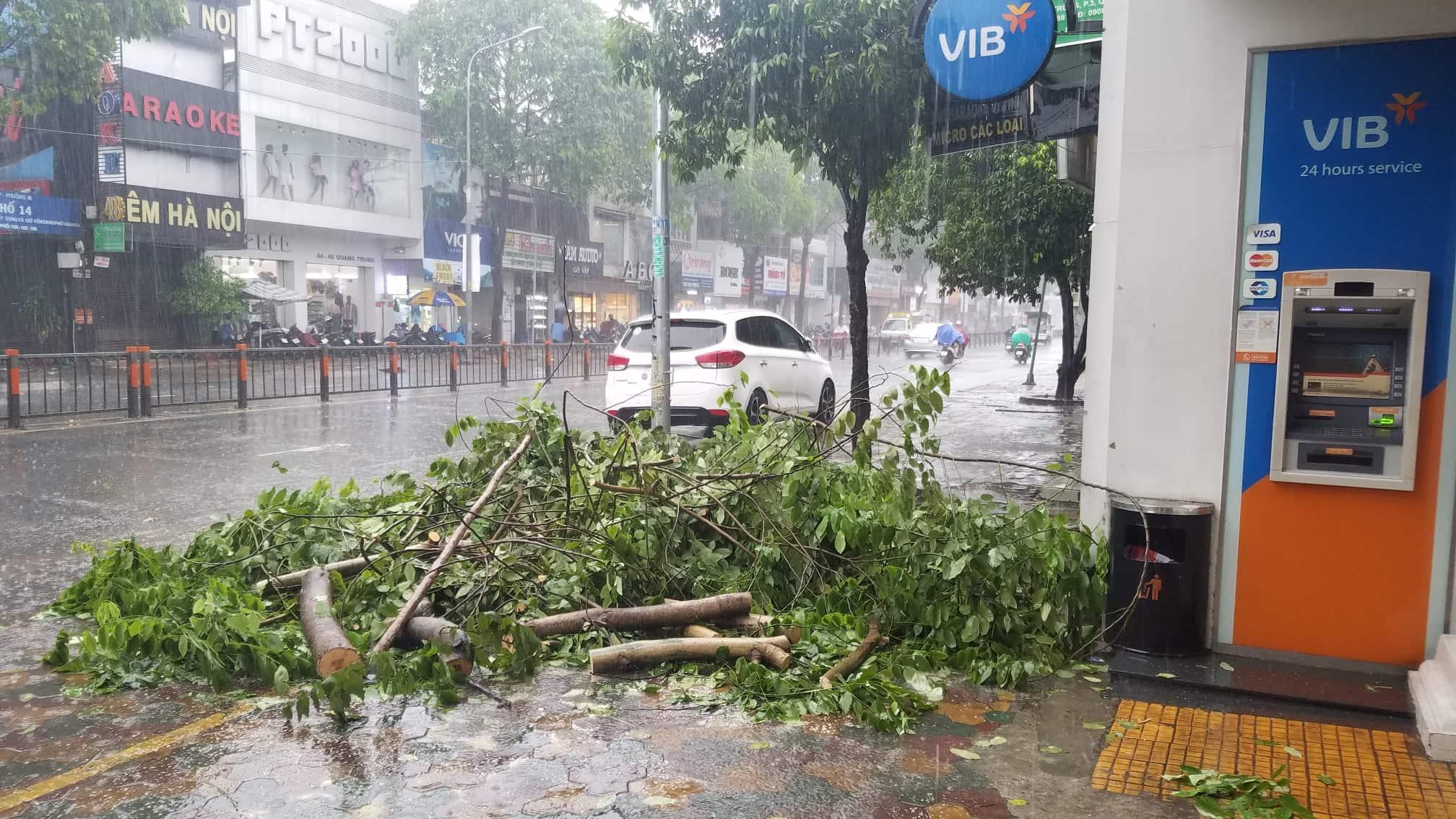 Sài Gòn mưa như trút nước, du khách thoải mái dạo mưa chụp ảnh - Ảnh 11