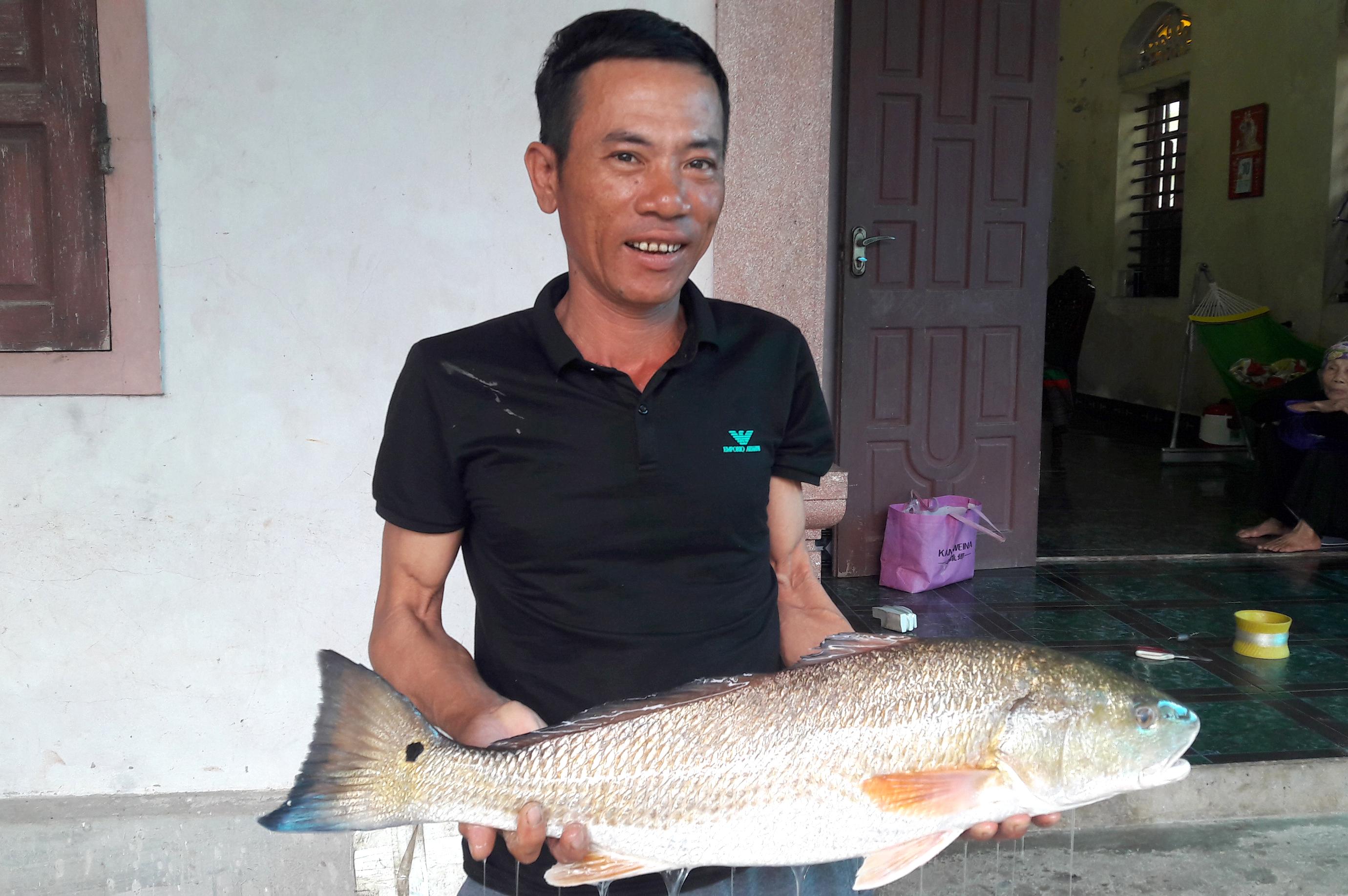 Cá vàng óng nặng 5kg, nghi cá sủ vàng tiền tỷ mắc câu thợ câu xứ Nghệ - Ảnh 1