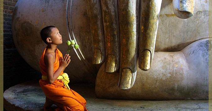 Lời Phật dạy về nhân quả báo ứng - Ảnh 1