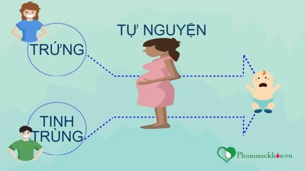 Mang thai hộ là gì và những điều cần biết - Ảnh 1