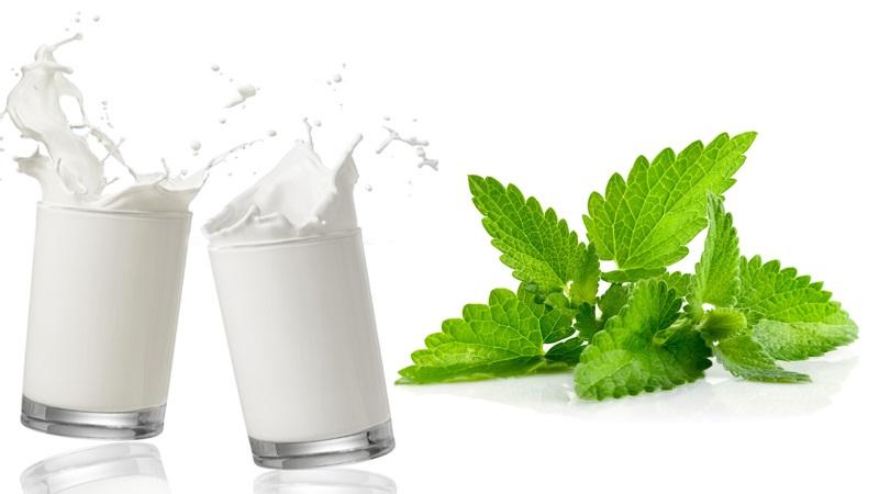 Sữa tươi là sản phẩm chăm sóc da trắng mịn cấp tốc hiệu quả