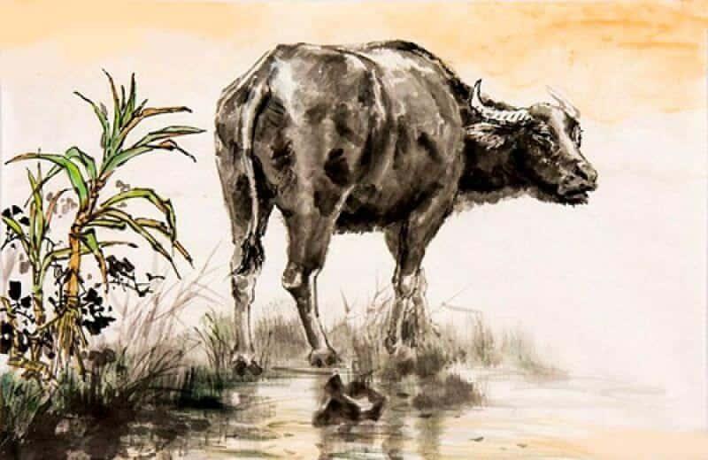 KHỔ TẬN CAM LAI, 2 con giáp sinh ra để TRẢ NỢ, 30 năm đầu VẤT VẢ, nửa đời sau chuyển mình mạnh mẽ, càng già càng giàu - Ảnh 1