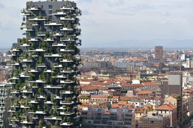 Độc đáo tòa chung cư như rừng giữa phố, mỗi buổi sáng chim hót líu lo - Ảnh 5