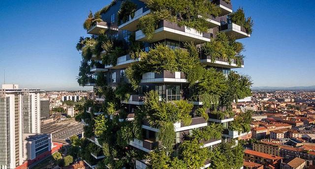 Độc đáo tòa chung cư như rừng giữa phố, mỗi buổi sáng chim hót líu lo - Ảnh 6