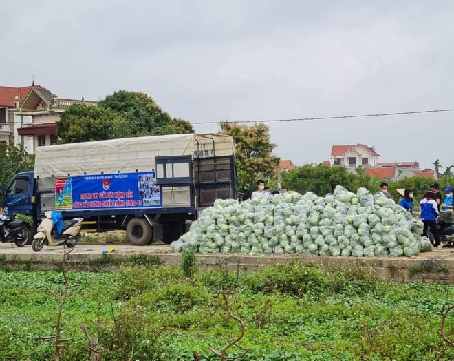 Tuấn Hưng giải cứu 8 tấn nông sản giúp bà con Hải Dương - Ảnh 1