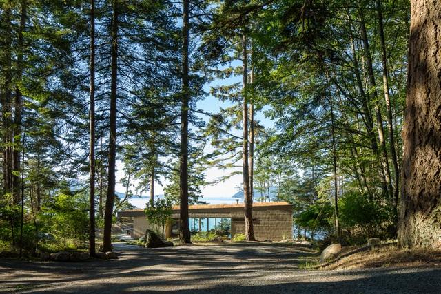 Nhà hình học nằm ở phần lõm của sườn đồi với vườn cây trên mái - Ảnh 1