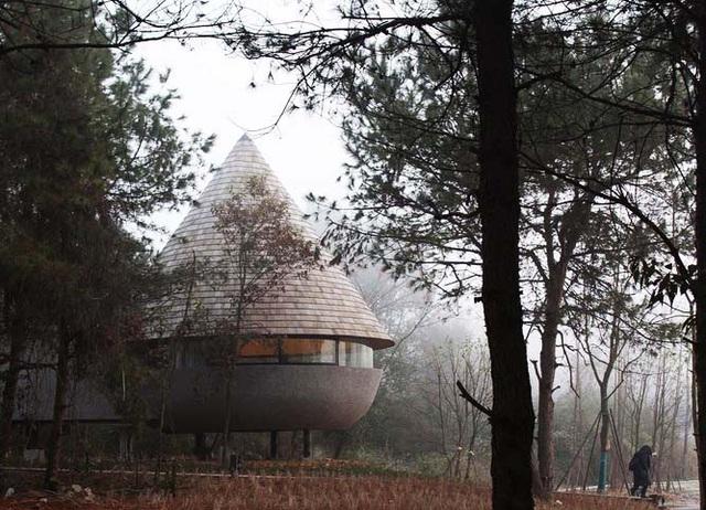 Nhà nấm giữa rừng thông thay đổi màu sắc theo độ ẩm tự nhiên - Ảnh 1