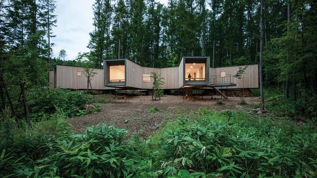 Nhà nghỉ dưỡng bằng gỗ ẩn mình giữa rừng cây ở Hokkaido, Nhật Bản - Ảnh 2