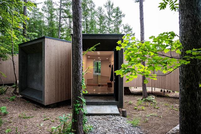 Nhà nghỉ dưỡng bằng gỗ ẩn mình giữa rừng cây ở Hokkaido, Nhật Bản - Ảnh 9