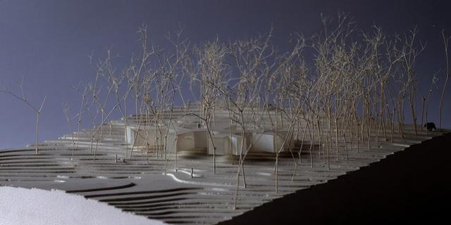 Nhà nghỉ dưỡng bằng gỗ ẩn mình giữa rừng cây ở Hokkaido, Nhật Bản - Ảnh 10