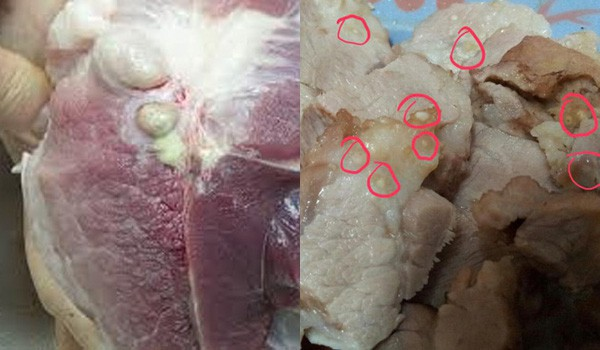 3 loại thịt lợn 'cực bẩn', nhiễm chất độc hại, rẻ mấy cũng không được mua - Ảnh 1