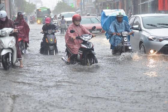 Dự báo thời tiết TPHCM cuối tuần 11-12/5: Thứ Bảy mưa dông - Chủ nhật trời mát - Ảnh 1