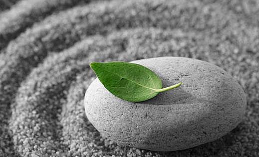 Đừng hao tâm tổn trí chỉ để có ngôi mộ đẹp, còn sống là phải biết tận hưởng - Ảnh 1