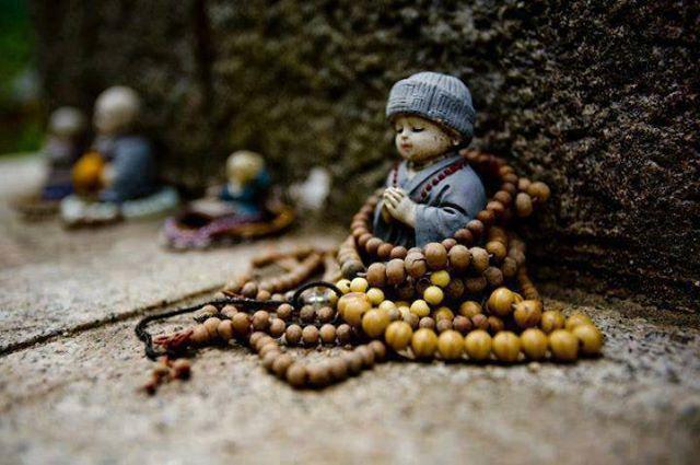 Đừng hao tâm tổn trí chỉ để có ngôi mộ đẹp, còn sống là phải biết tận hưởng - Ảnh 2