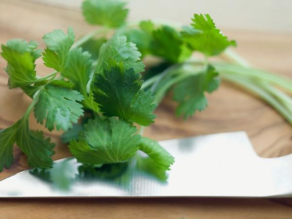 Sau khi ăn tỏi, hãy ăn thêm một ít rau mùi để loại bỏ mùi hôi