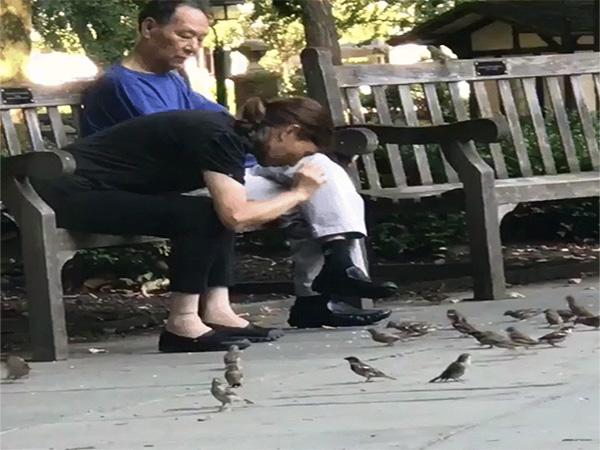 Người phụ nữ vô tư bắt chim trong công viên bỏ vào túi - Ảnh 1