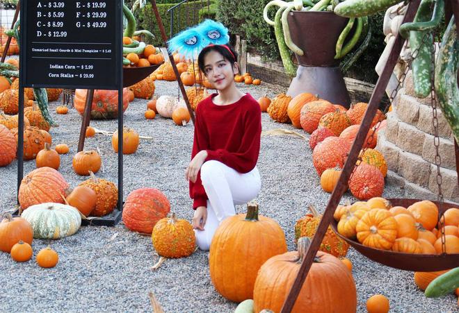 Con gái Linh Nga khiến dân mạng thổn thức vì nhan sắc 14 tuổi, xinh đẹp hơn mẹ bội phần - Ảnh 6