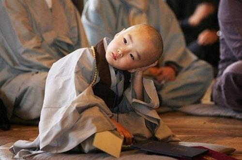 Phật dạy: Tuỳ ngộ mà an, tuỳ duyên mà sống - Ảnh 3