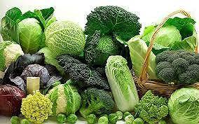 Hầu hết các loại rau đều có lượng calo thấp nhưng lại chứa nhiều vitamin, khoáng chất. Ảnh: Internet