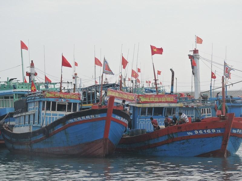 Ngư dân Lý Sơn khai biển ngư trường Hoàng Sa, Trường Sa - Ảnh 1