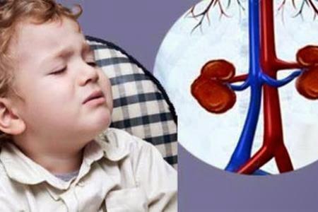 Trẻ nhỏ cũng bị sỏi thận vì thói quen ăn uống cha mẹ không ngờ tới - Ảnh 2