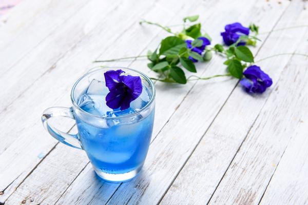 Cách làm trà hoa đậu biếc nhanh chóng giải nhiệt mùa hè  - Ảnh 2