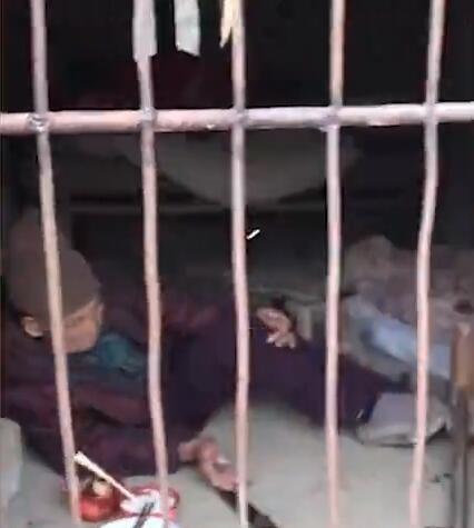 Cụ bà gần 100 tuổi bị con dâu nhốt vào chuồng lợn, nằm co ro trong giá lạnh - Ảnh 1