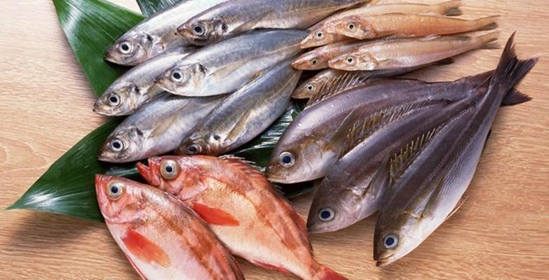 Nhà nào thường ăn cá thì phải chú ý kỹ những điều này kẻo trúng độc tử vong lúc nào không hay - Ảnh 2