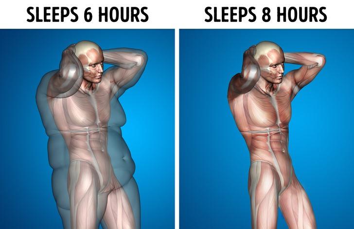 Điều gì sẽ xảy ra với cơ thể nếu ngủ 8 tiếng mỗi ngày? - Ảnh 2