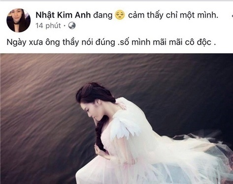 Hạnh phúc chưa bao lâu, bạn thân xác nhận Nhật Kim Anh đã đường ai nấy đi với chồng doanh nhân - Ảnh 1