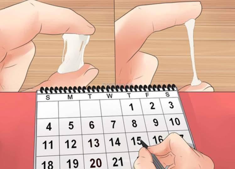 Ngày rụng trứng là ngày nào? - Ảnh 2