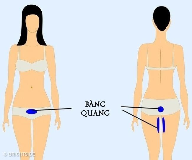 9 vị trí nếu thấy đau thì bạn nên cẩn trọng và đi khám càng sớm càng tốt - Ảnh 9