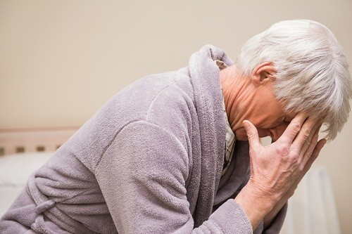 Cây dướng trị nhiều bệnh - Ảnh 3