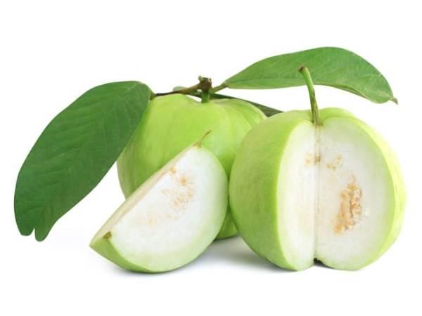 8 loại trái cây mùa đông giúp giảm cân hiệu quả - Ảnh 1