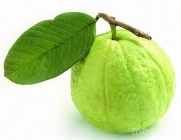 10 lợi ích của trái ổi đối với sức khỏe - Ảnh 1