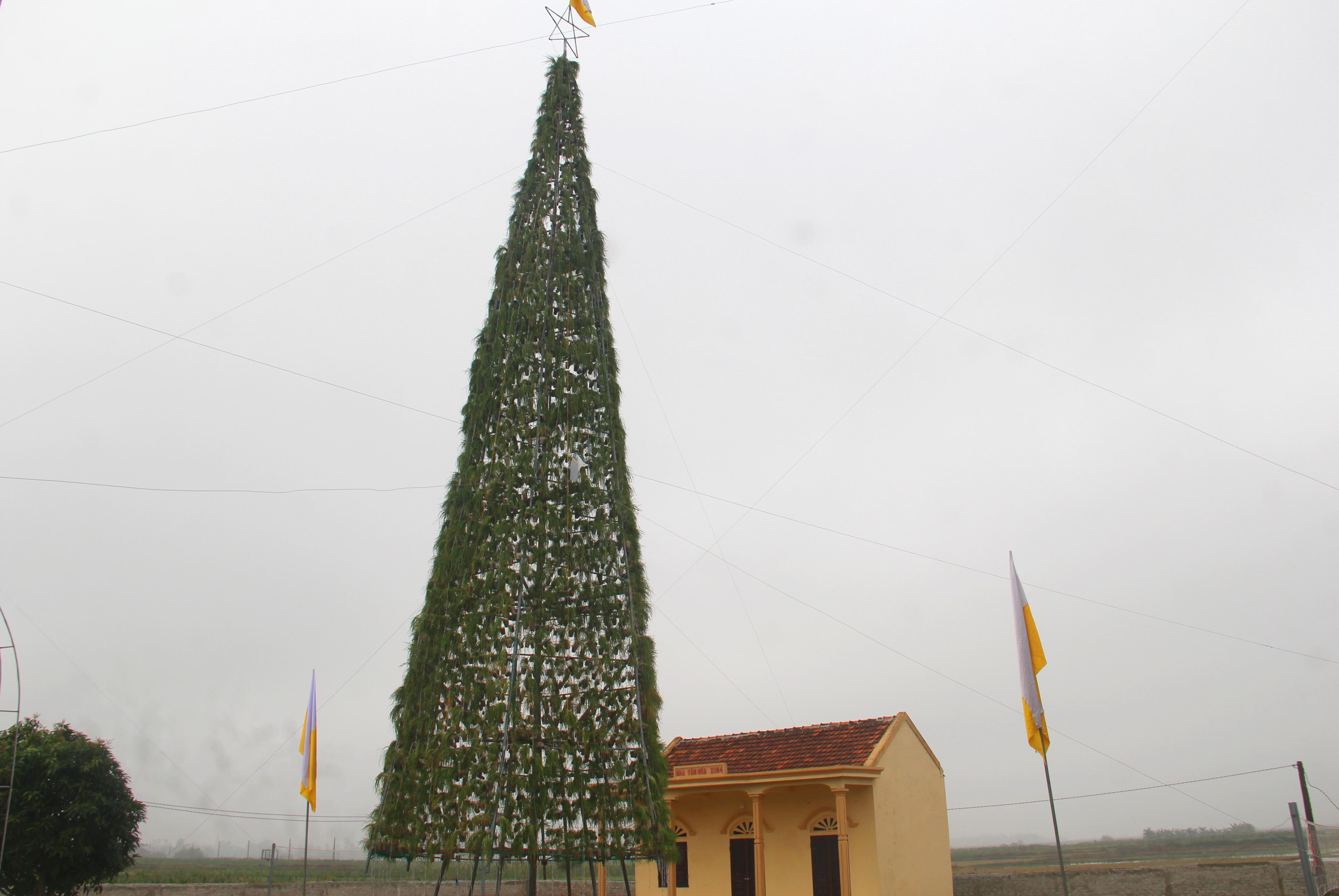 Cây thông cao 20m được kết từ hàng vạn cây hành tăm đón Giáng sinh độc nhất xứ Nghệ - Ảnh 1
