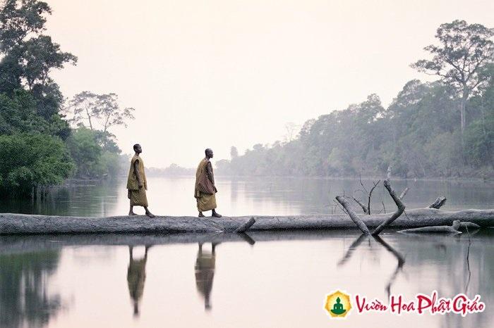 Phật nói: Cho đi đừng hối hận, mất rồi đừng tiếc nuối - Ảnh 1