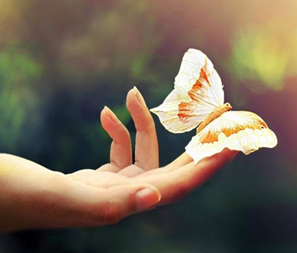 Phật răn dậy: Có 3 điều nhất định phải làm, đừng để mất đi rồi mới hối hận - Ảnh 1