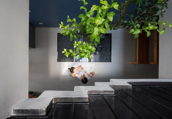 Phần không gian trung tâm còn lại được xây dựng thành một bể cá cảnh nhỏ, trồng thêm cây xanh, bên trên là giếng trời thoáng đãng.